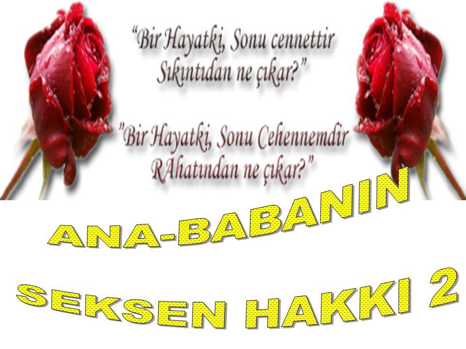 ANA-BABANIN SEKSEN HAKKI 2
