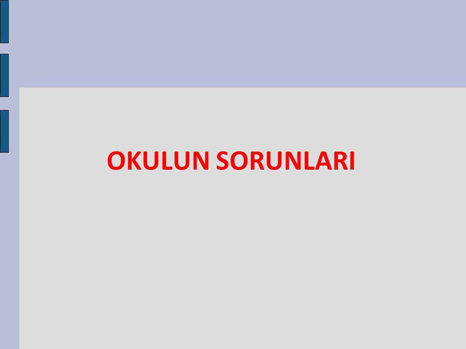 OKULUN SORUNLARI