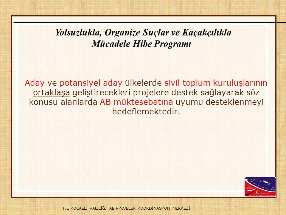 Yolsuzlukla, Organize Suçlar ve Kaçakçılıkla Mücadele Hibe Programı