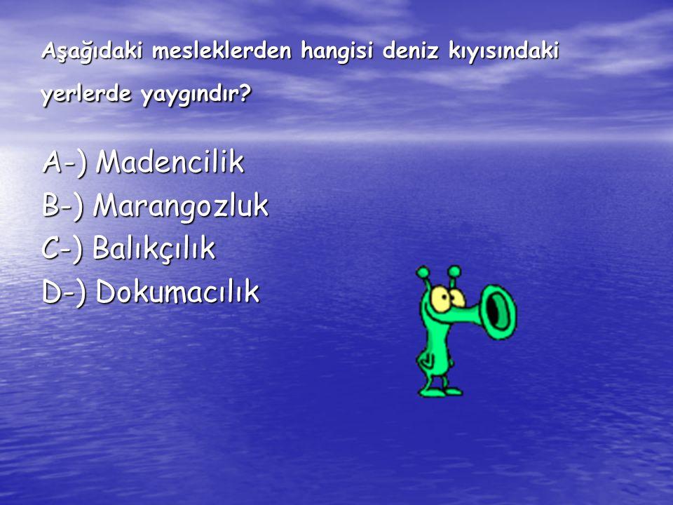 Aşağıdaki mesleklerden hangisi deniz kıyısındaki yerlerde yaygındır
