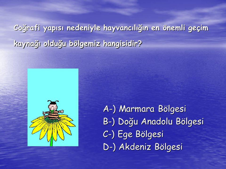 B-) Doğu Anadolu Bölgesi C-) Ege Bölgesi D-) Akdeniz Bölgesi