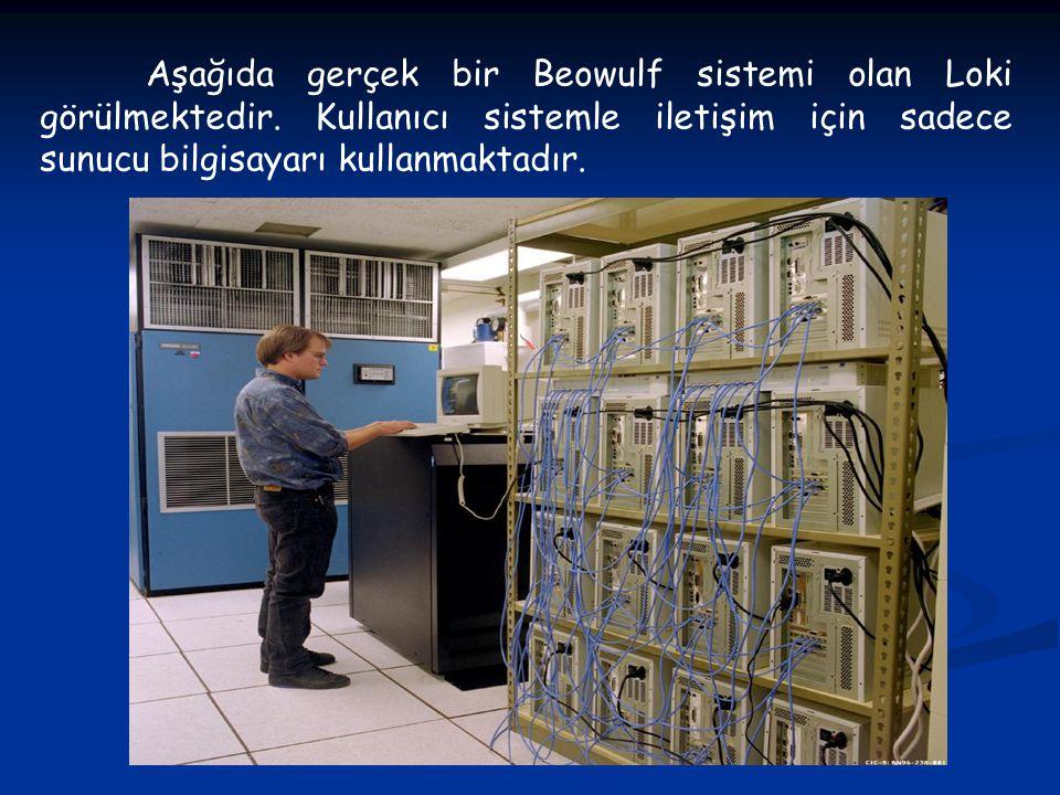 Aşağıda gerçek bir Beowulf sistemi olan Loki görülmektedir