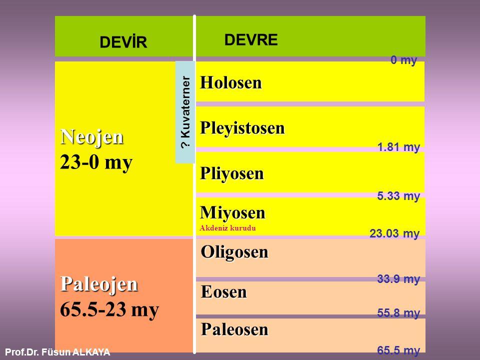 Neojen 23-0 my Paleojen 65.5-23 my Holosen Pleyistosen Pliyosen