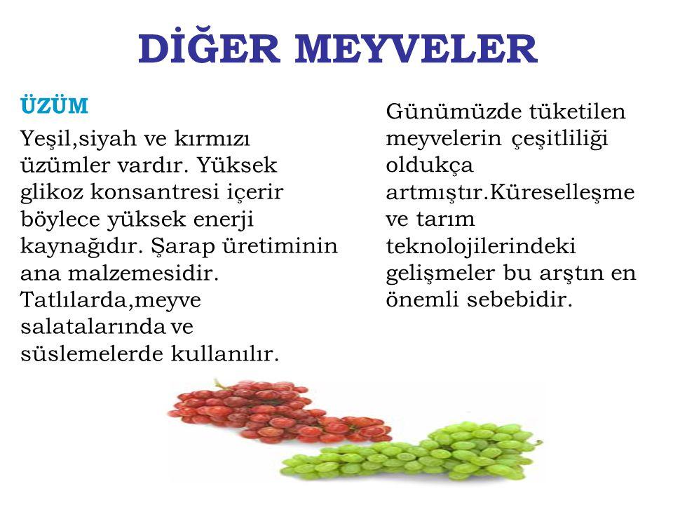 DİĞER MEYVELER