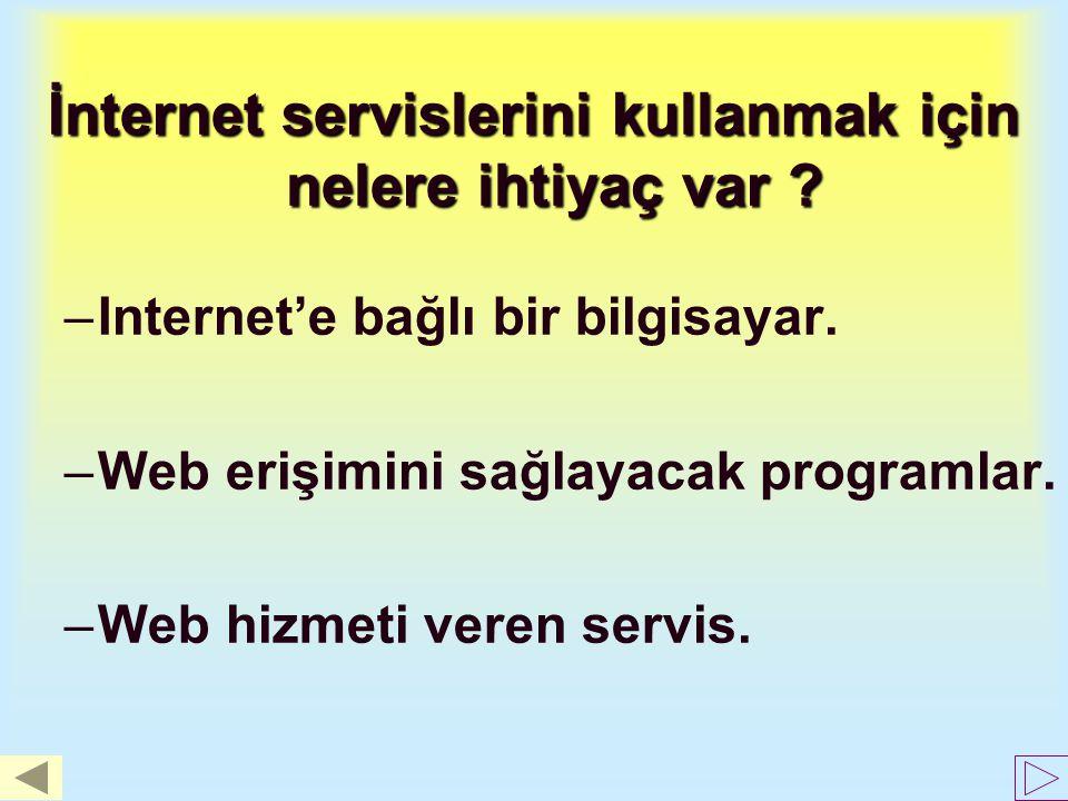 İnternet servislerini kullanmak için nelere ihtiyaç var