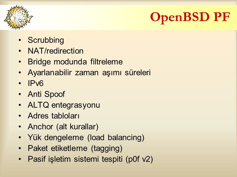 OpenBSD PF Scrubbing NAT/redirection Bridge modunda filtreleme