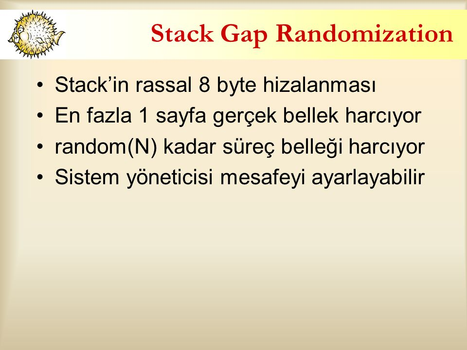 Stack Gap Randomization