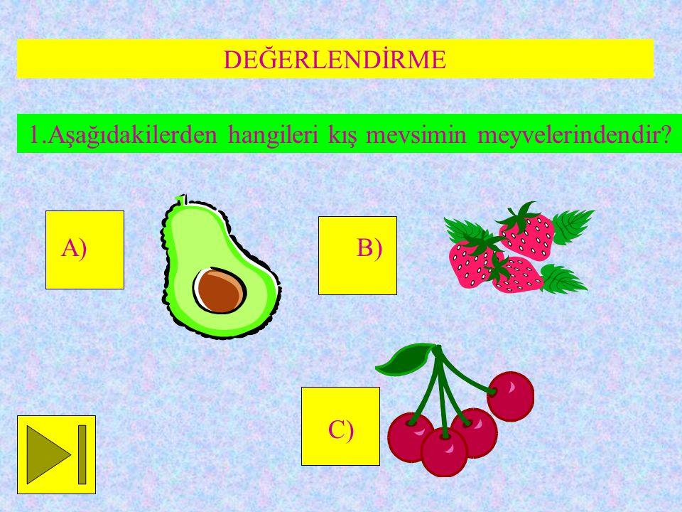 1.Aşağıdakilerden hangileri kış mevsimin meyvelerindendir