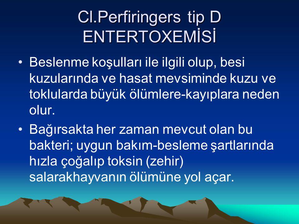 Cl.Perfiringers tip D ENTERTOXEMİSİ