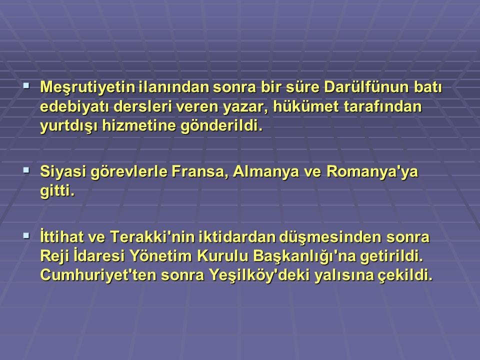 Meşrutiyetin ilanından sonra bir süre Darülfünun batı edebiyatı dersleri veren yazar, hükümet tarafından yurtdışı hizmetine gönderildi.