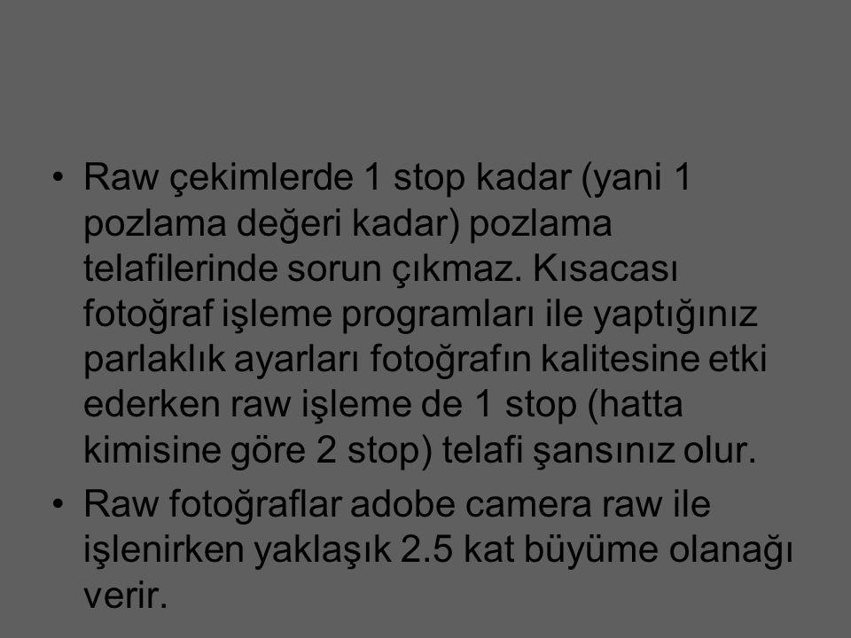 Raw çekimlerde 1 stop kadar (yani 1 pozlama değeri kadar) pozlama telafilerinde sorun çıkmaz. Kısacası fotoğraf işleme programları ile yaptığınız parlaklık ayarları fotoğrafın kalitesine etki ederken raw işleme de 1 stop (hatta kimisine göre 2 stop) telafi şansınız olur.