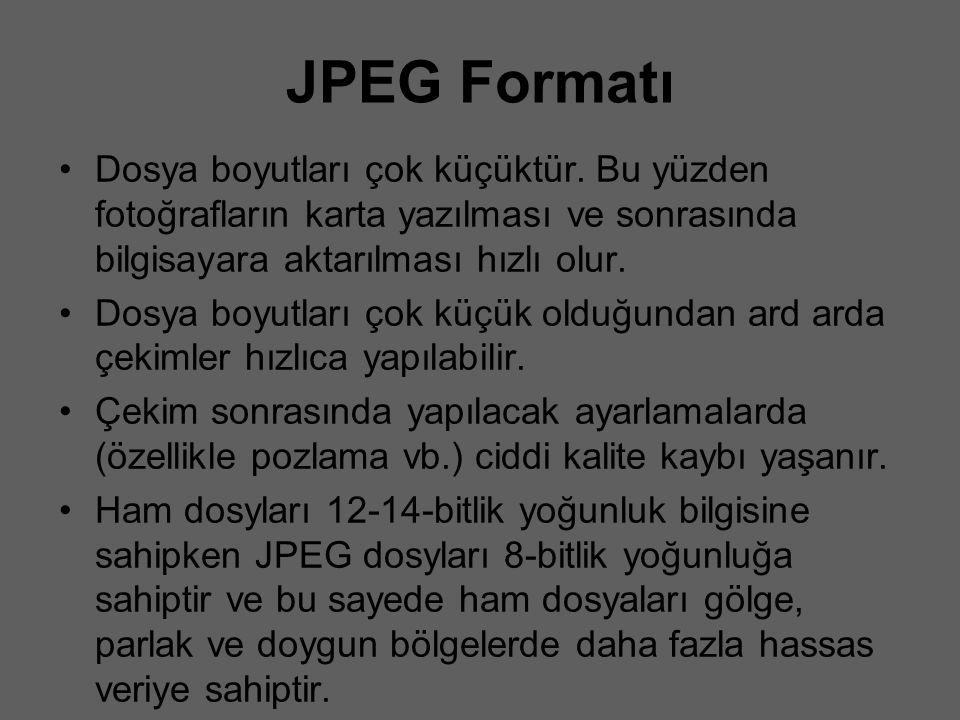 JPEG Formatı Dosya boyutları çok küçüktür. Bu yüzden fotoğrafların karta yazılması ve sonrasında bilgisayara aktarılması hızlı olur.