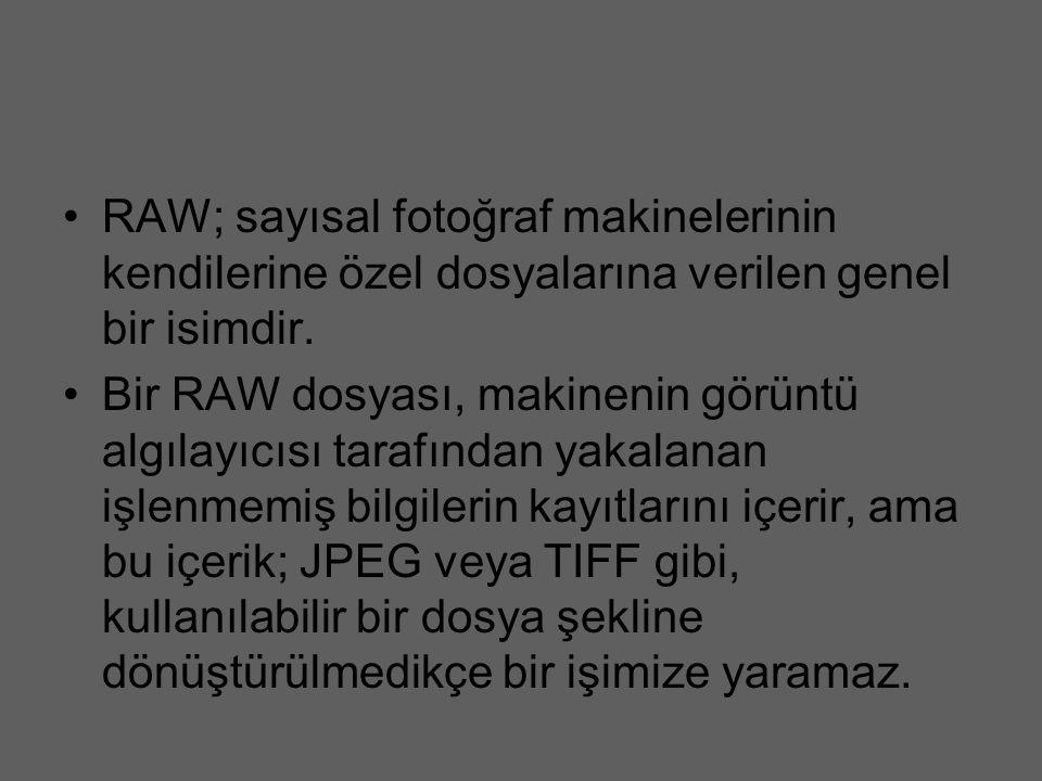 RAW; sayısal fotoğraf makinelerinin kendilerine özel dosyalarına verilen genel bir isimdir.