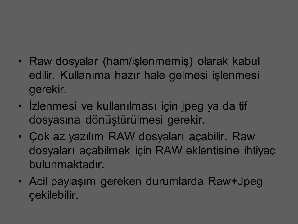 Raw dosyalar (ham/işlenmemiş) olarak kabul edilir