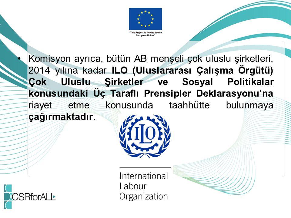 Komisyon ayrıca, bütün AB menşeli çok uluslu şirketleri, 2014 yılına kadar ILO (Uluslararası Çalışma Örgütü) Çok Uluslu Şirketler ve Sosyal Politikalar konusundaki Üç Taraflı Prensipler Deklarasyonu'na riayet etme konusunda taahhütte bulunmaya çağırmaktadır.