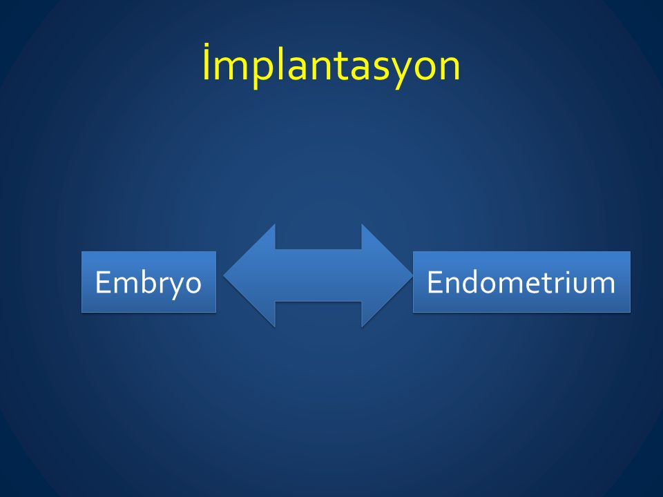 İmplantasyon Embryo Endometrium