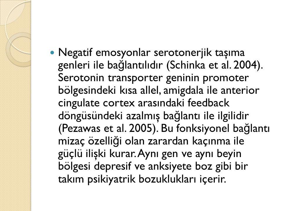Negatif emosyonlar serotonerjik taşıma genleri ile bağlantılıdır (Schinka et al.