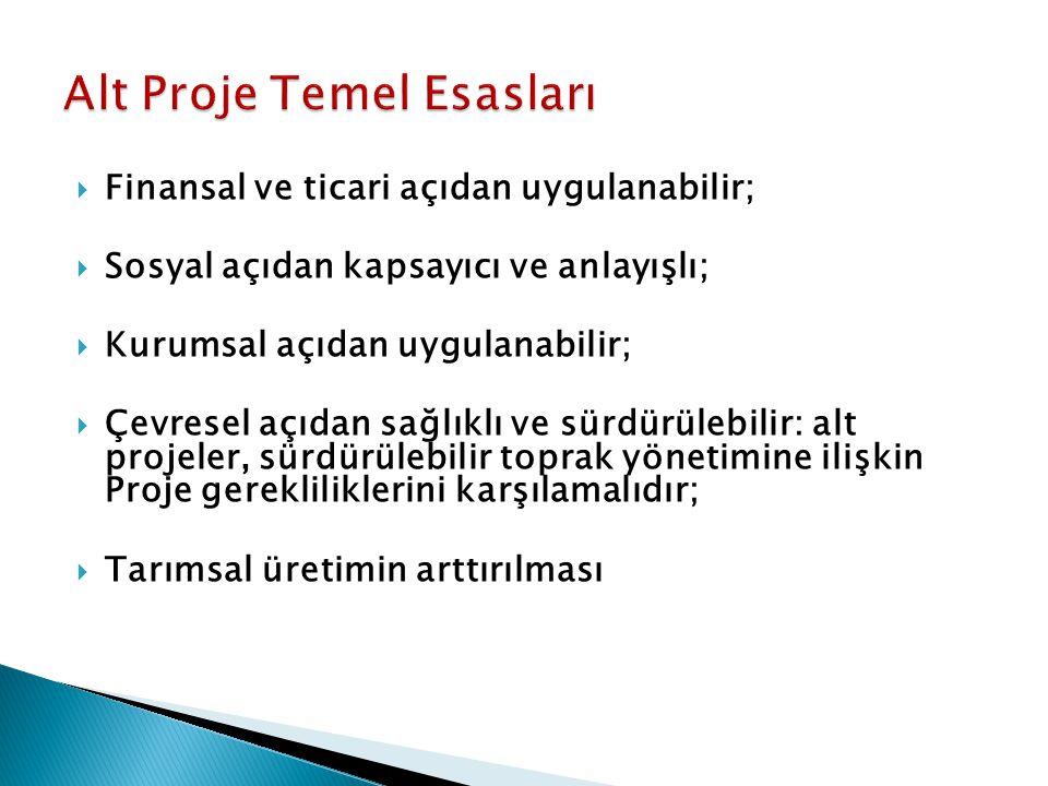 Alt Proje Temel Esasları