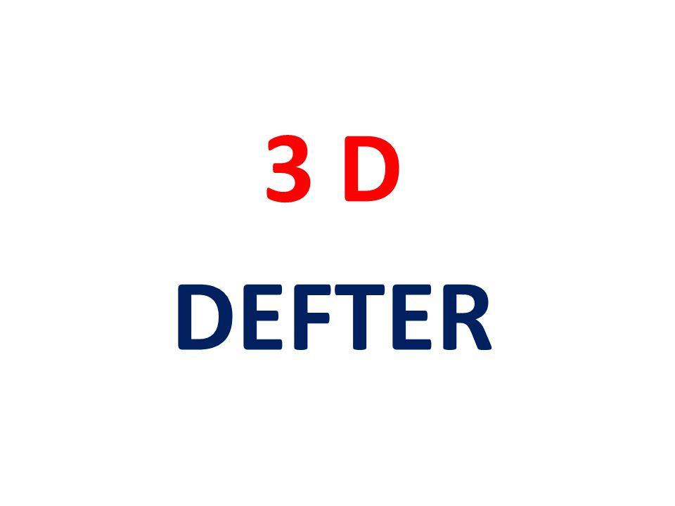 3 D DEFTER