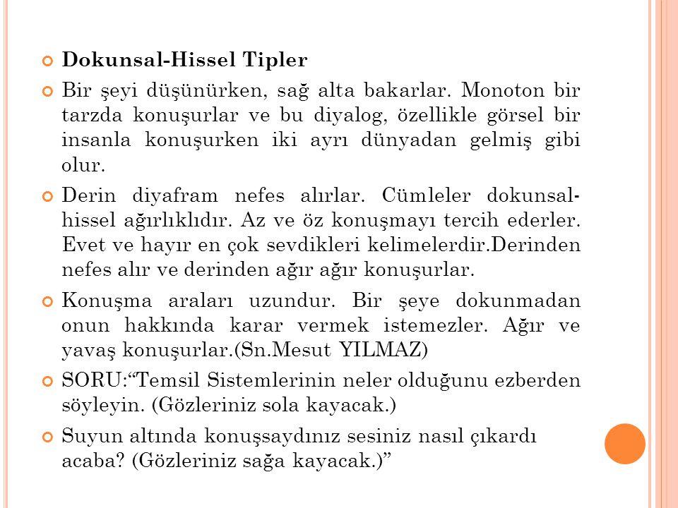 Dokunsal-Hissel Tipler