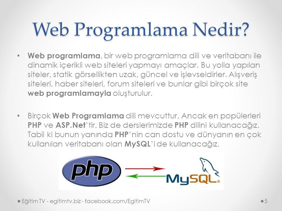 Web Programlama Nedir