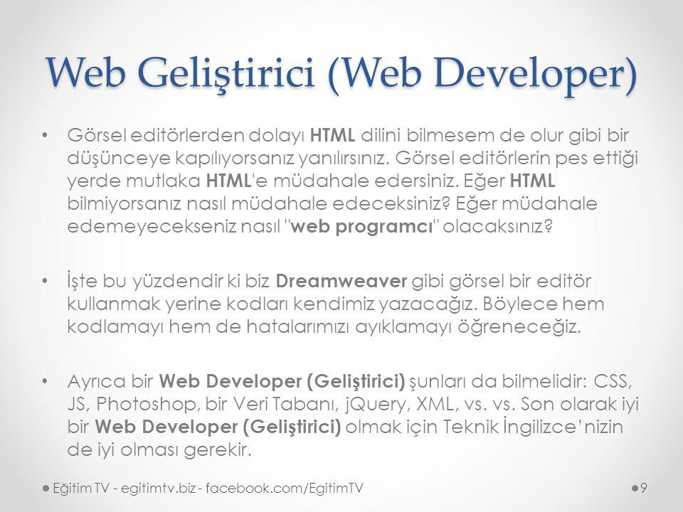 Web Geliştirici (Web Developer)