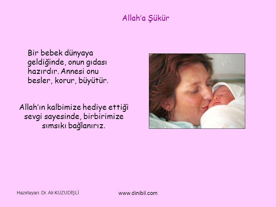 Allah'a Şükür Bir bebek dünyaya geldiğinde, onun gıdası hazırdır. Annesi onu besler, korur, büyütür.