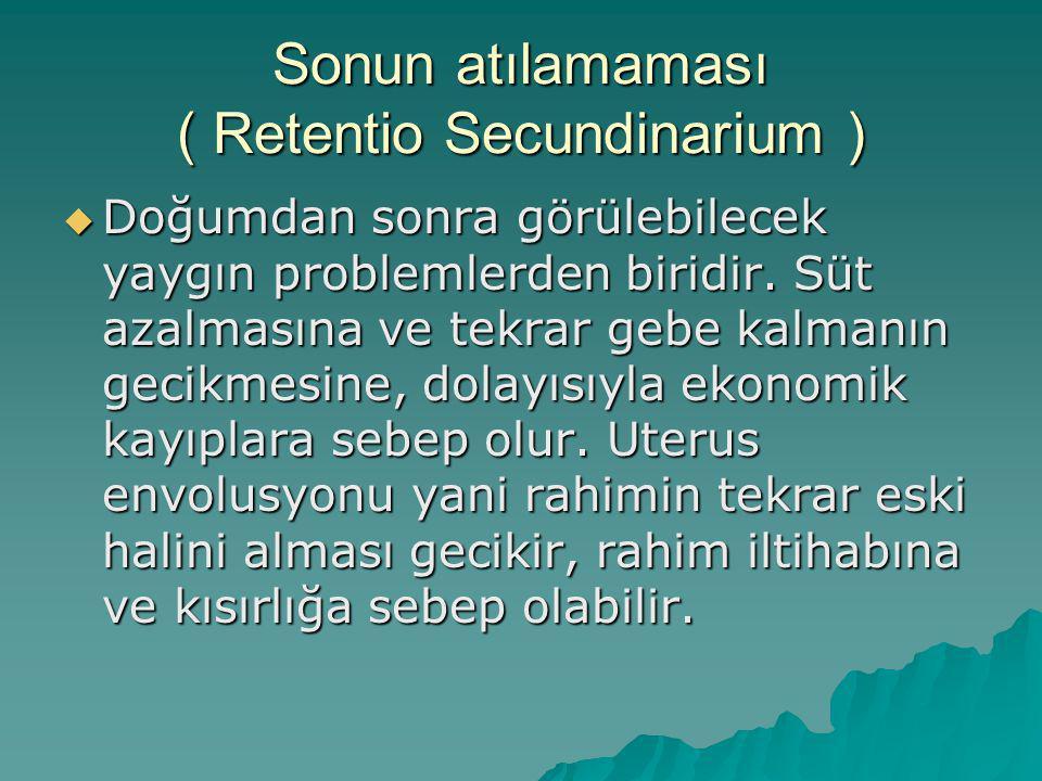 Sonun atılamaması ( Retentio Secundinarium )