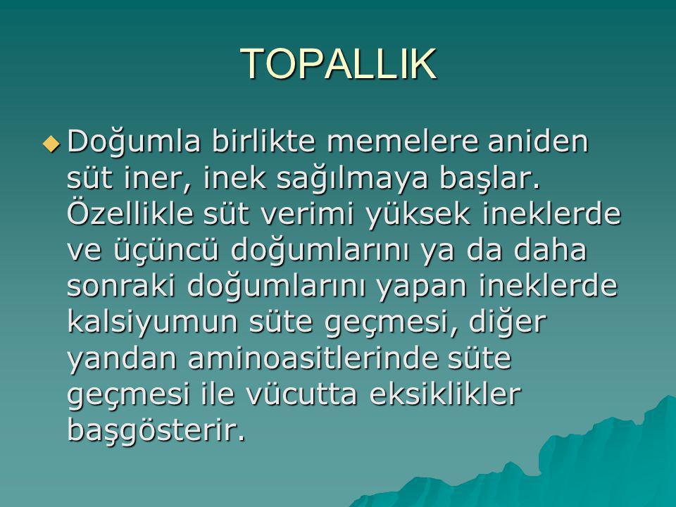 TOPALLIK
