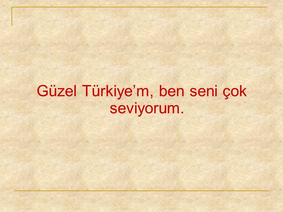 Güzel Türkiye'm, ben seni çok seviyorum.