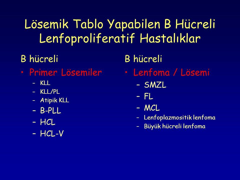 Lösemik Tablo Yapabilen B Hücreli Lenfoproliferatif Hastalıklar