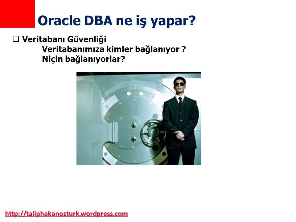 Oracle DBA ne iş yapar Veritabanı Güvenliği