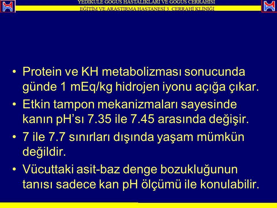 Protein ve KH metabolizması sonucunda günde 1 mEq/kg hidrojen iyonu açığa çıkar.