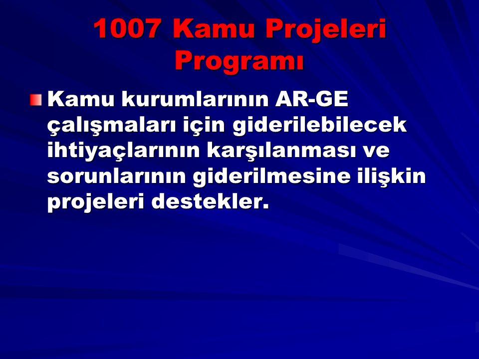 1007 Kamu Projeleri Programı