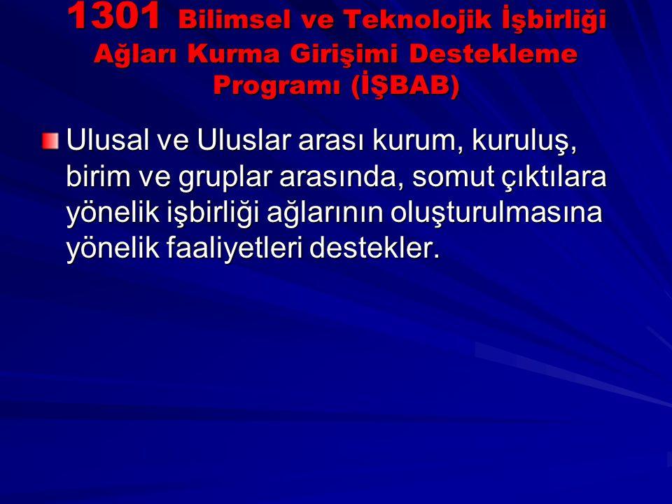 1301 Bilimsel ve Teknolojik İşbirliği Ağları Kurma Girişimi Destekleme Programı (İŞBAB)