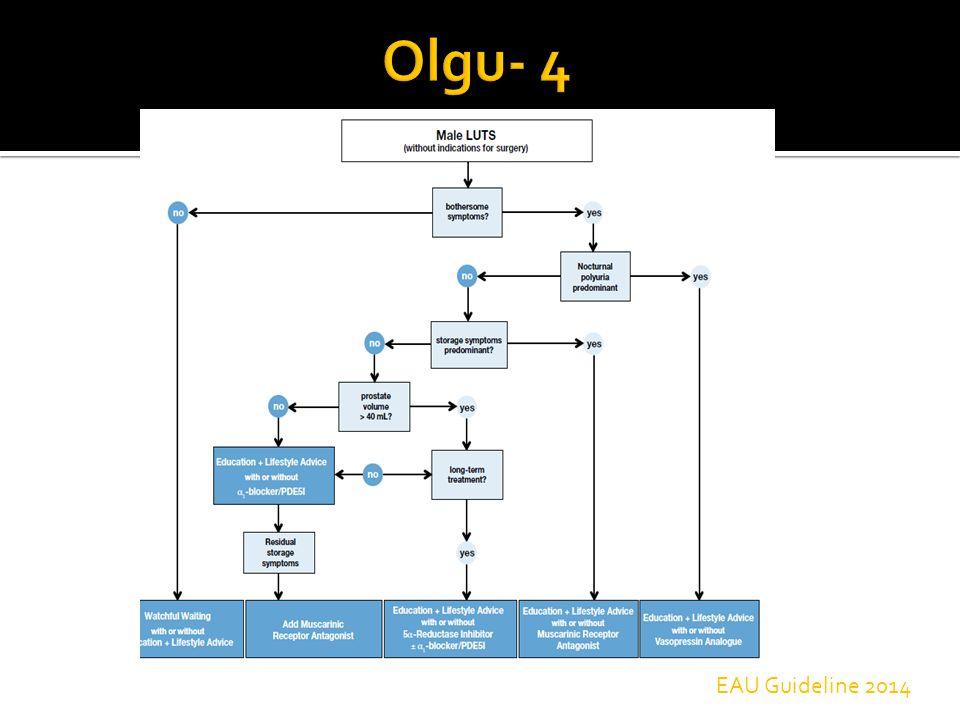 Olgu- 4 EAU Guideline 2014
