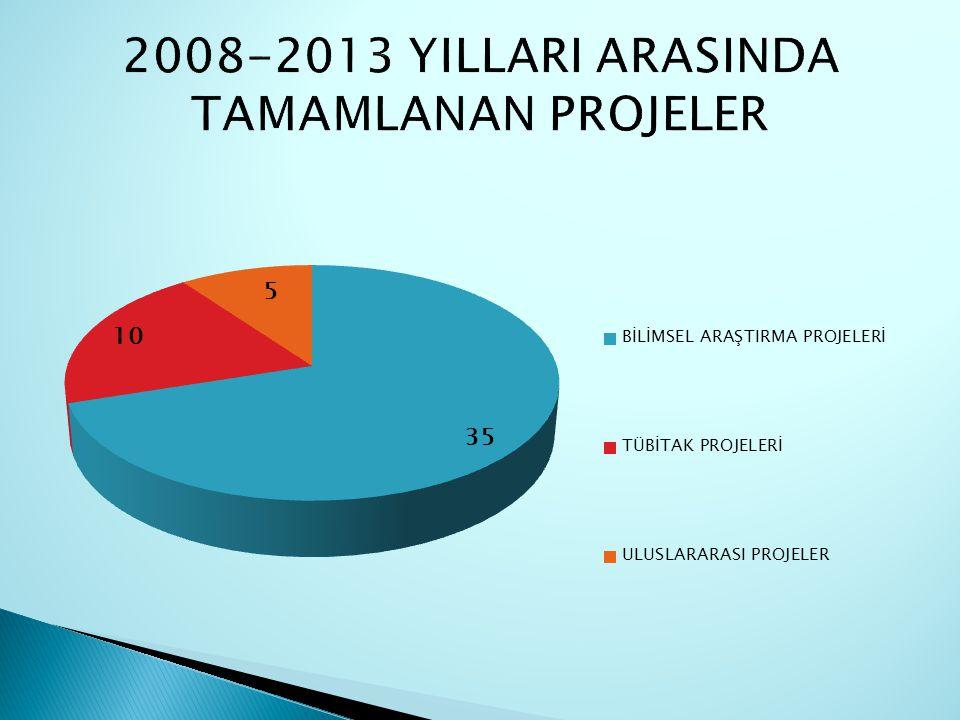 2008-2013 YILLARI ARASINDA TAMAMLANAN PROJELER