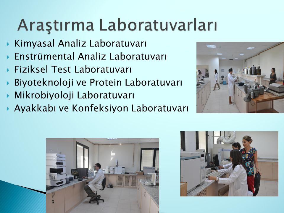Araştırma Laboratuvarları