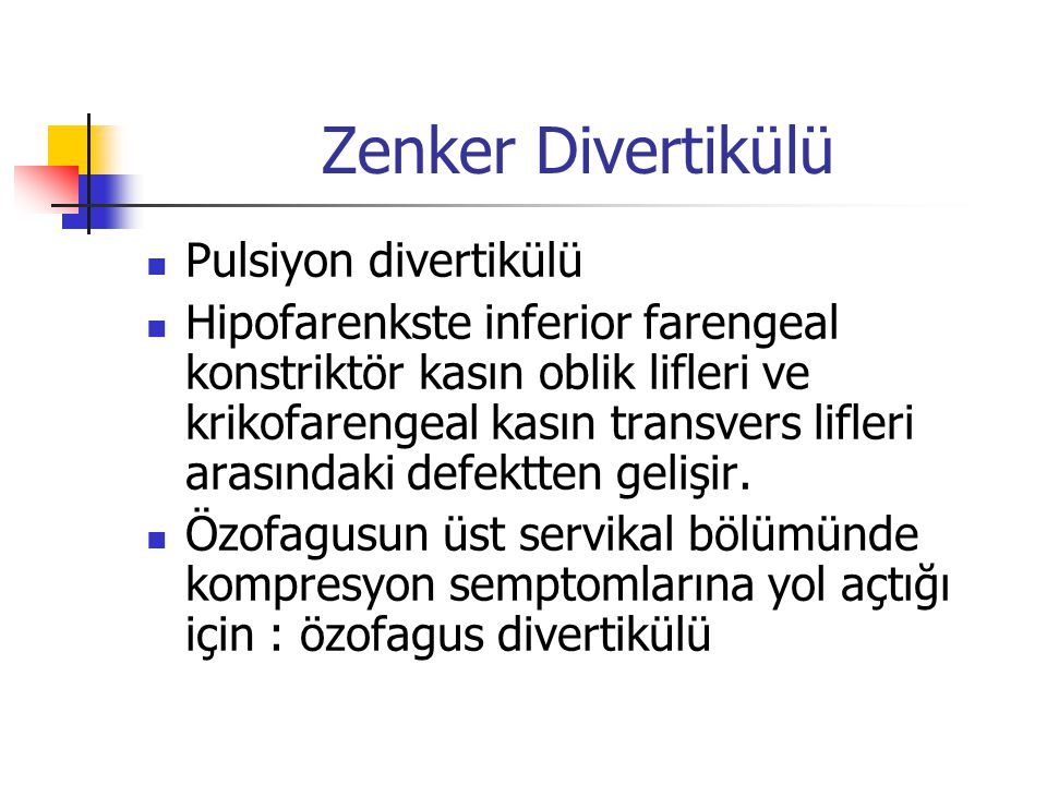 Zenker Divertikülü Pulsiyon divertikülü