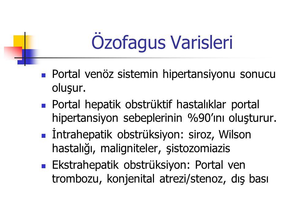 Özofagus Varisleri Portal venöz sistemin hipertansiyonu sonucu oluşur.