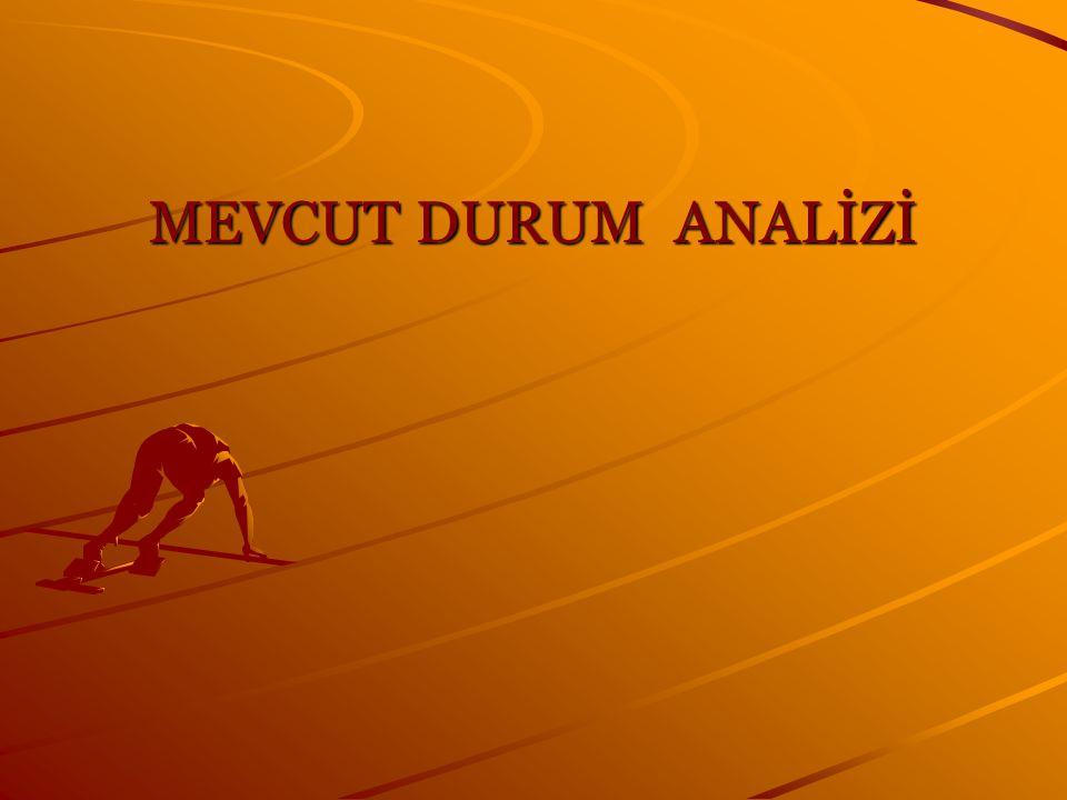 MEVCUT DURUM ANALİZİ