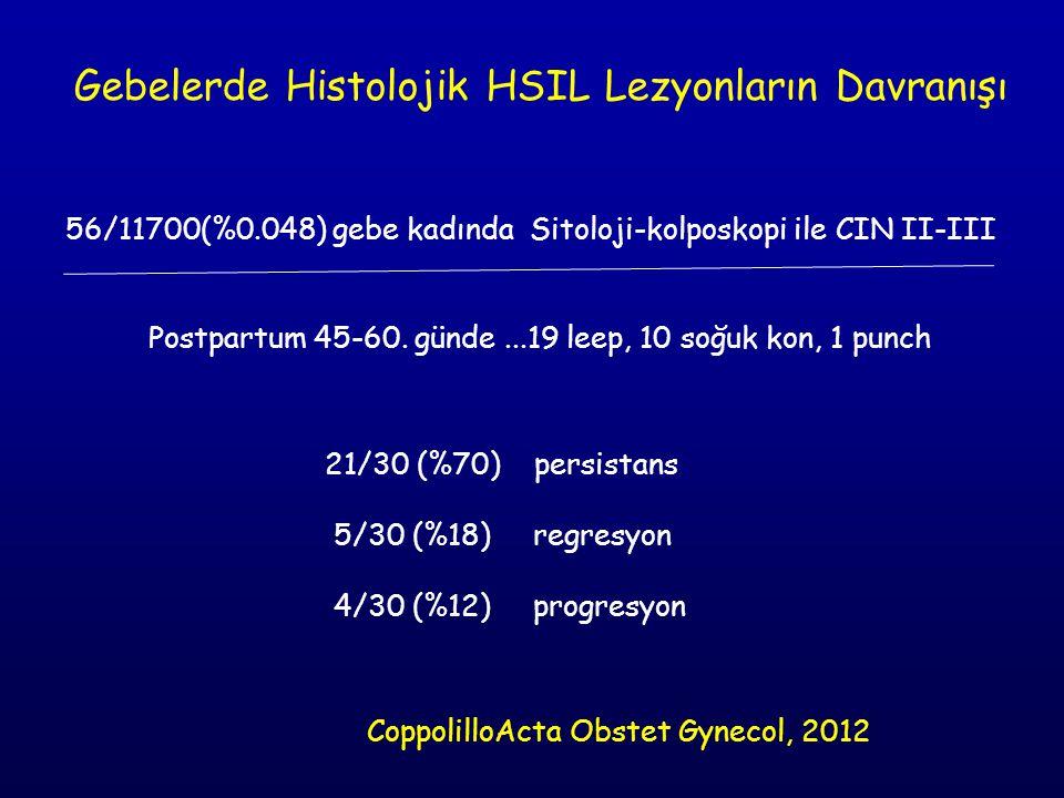 Gebelerde Histolojik HSIL Lezyonların Davranışı