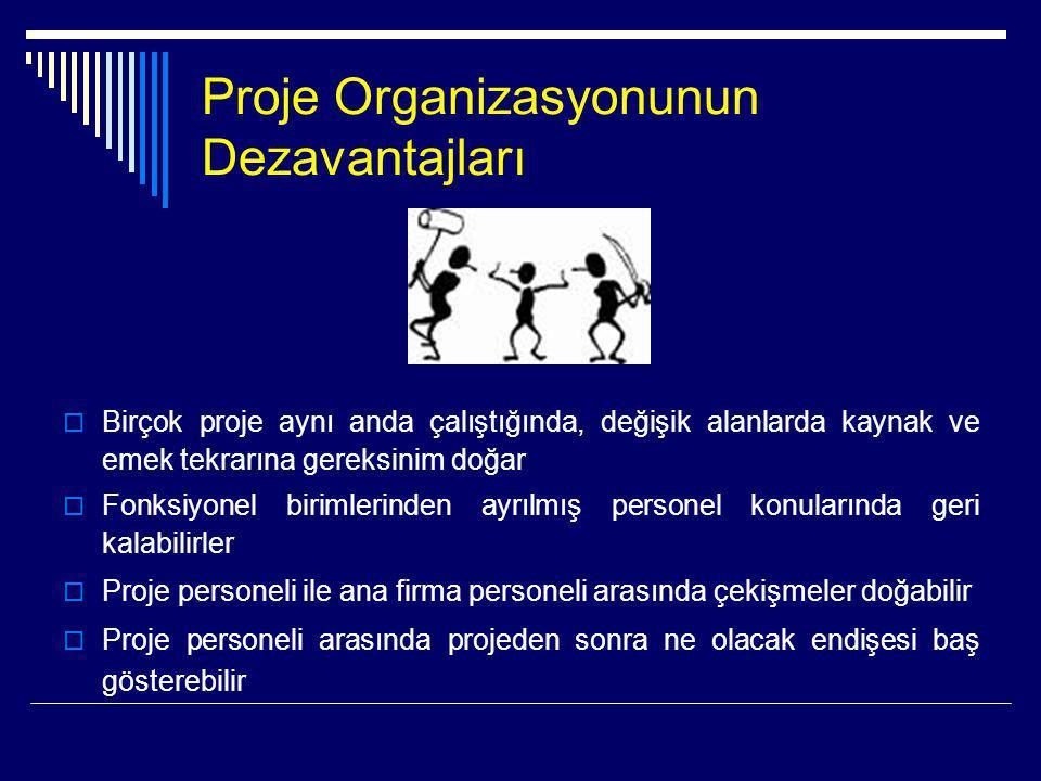 Proje Organizasyonunun Dezavantajları