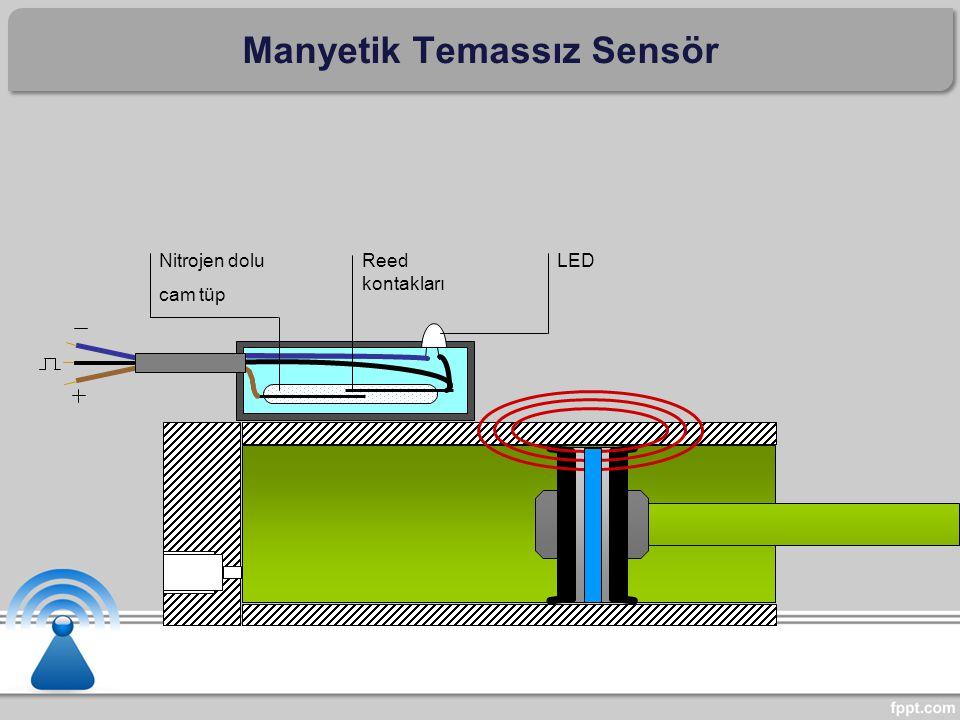 Manyetik Temassız Sensör