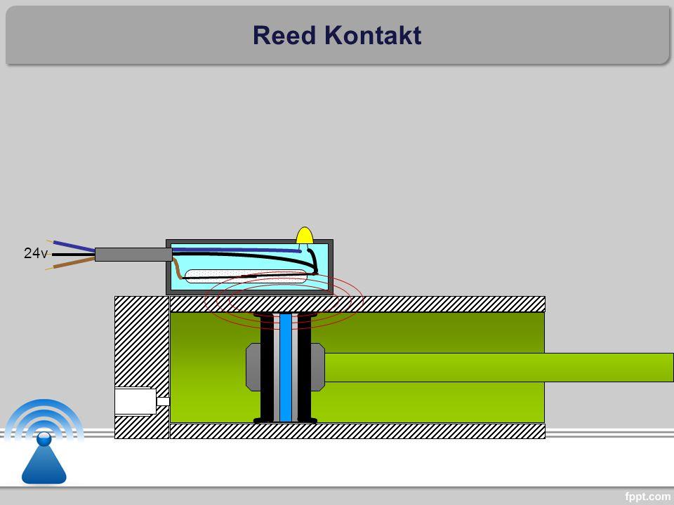 Reed Kontakt 24v