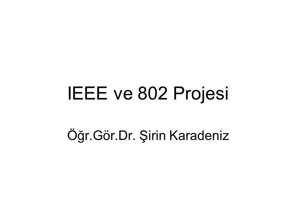 Öğr.Gör.Dr. Şirin Karadeniz