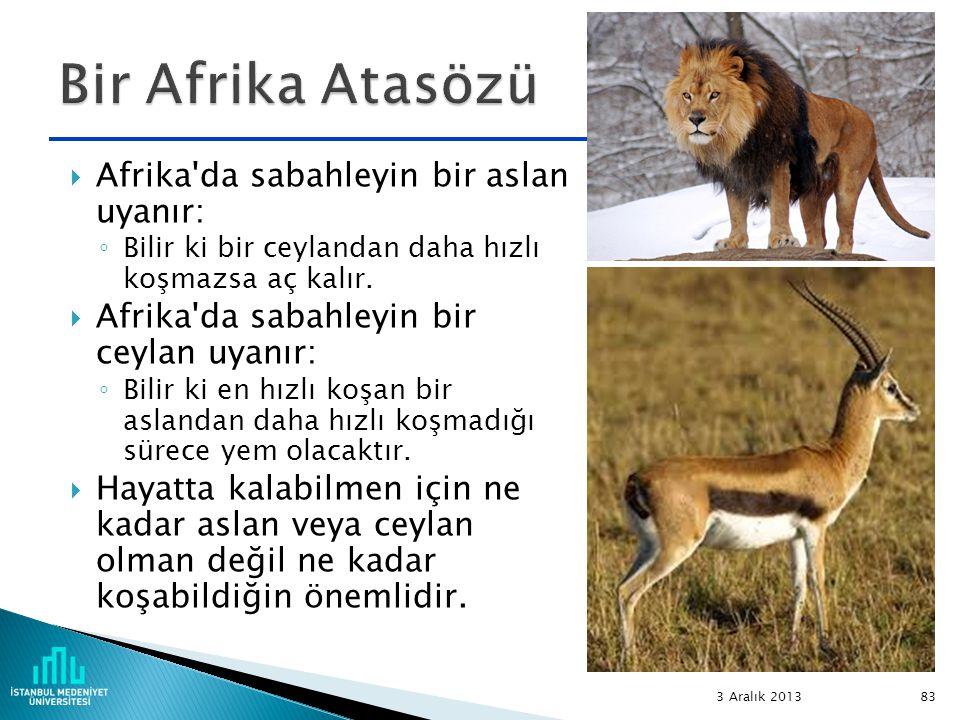 Bir Afrika Atasözü Afrika da sabahleyin bir aslan uyanır: