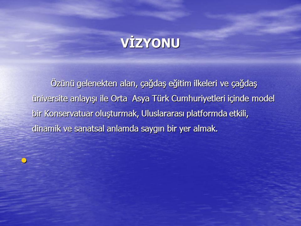 VİZYONU