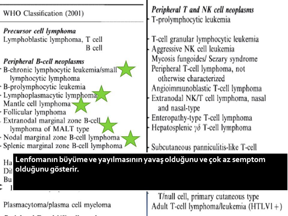 WHO nun lenfoma klasifikasyonu hücresel orjine ve lenfomanın patolojisine dayanmaktadır ve Who klasifikasyonu indolent lenfoma terimini içermez. Bu klinik bir terimdir ve patolojik bir terim değildir.