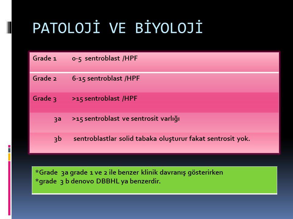 PATOLOJİ VE BİYOLOJİ Grade 1 0-5 sentroblast /HPF Grade 2